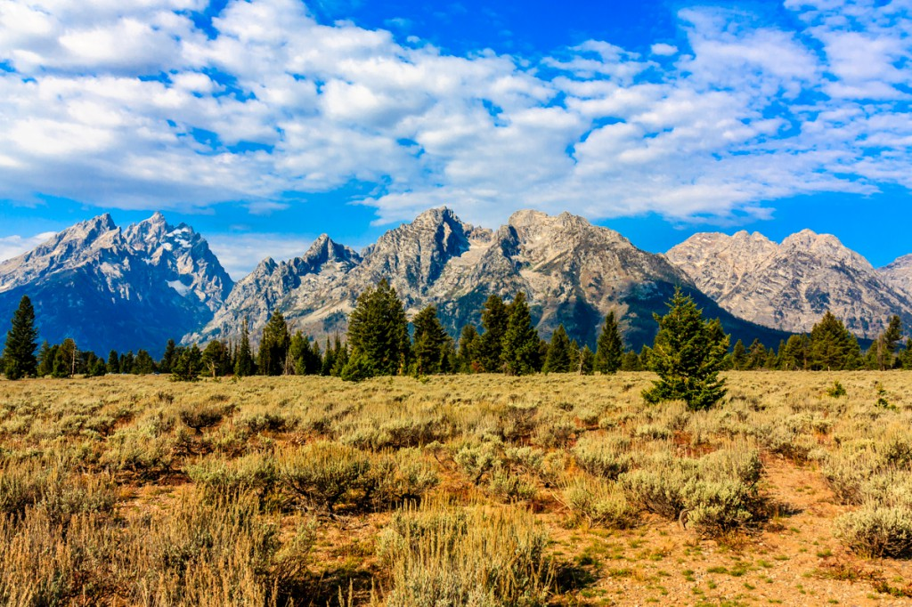 The Tetons rise from the flat Jackson Hole with no foothills