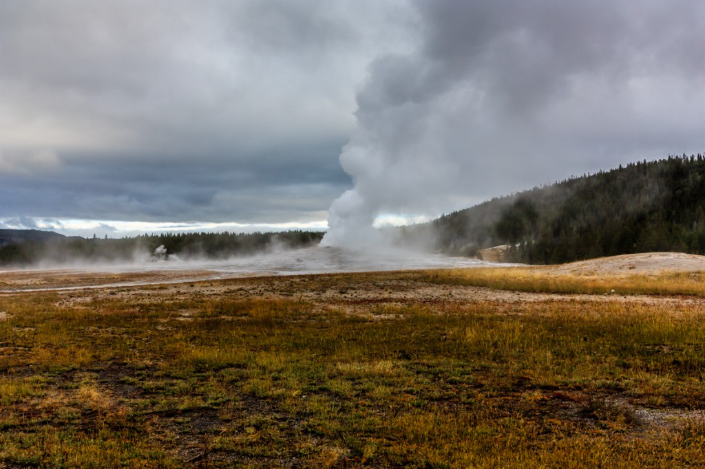 Old Faithful performs rain or shine