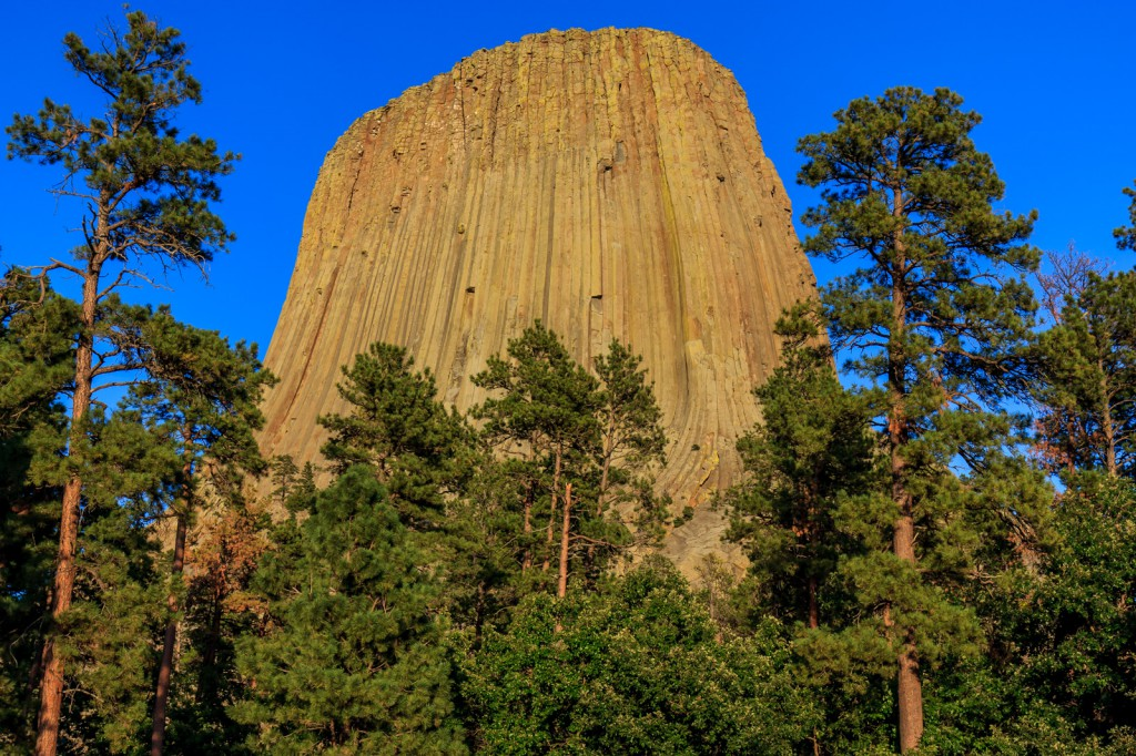 Up close with Devil's Tower