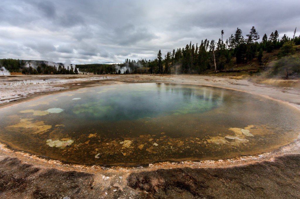 There are many colorful pools in the Old Faithful geyser basin.
