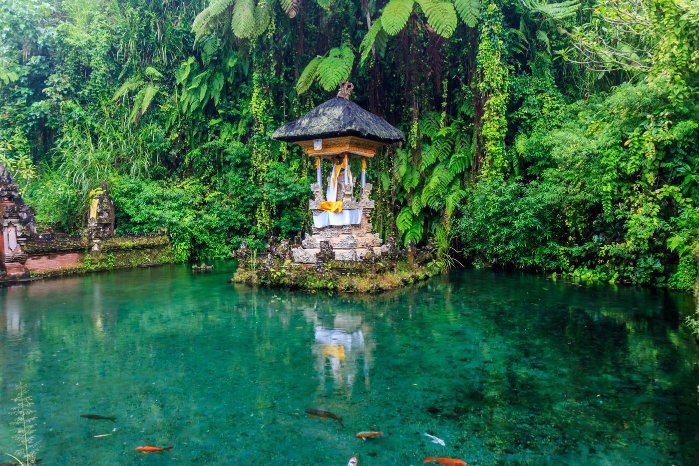 A beautiful pond.
