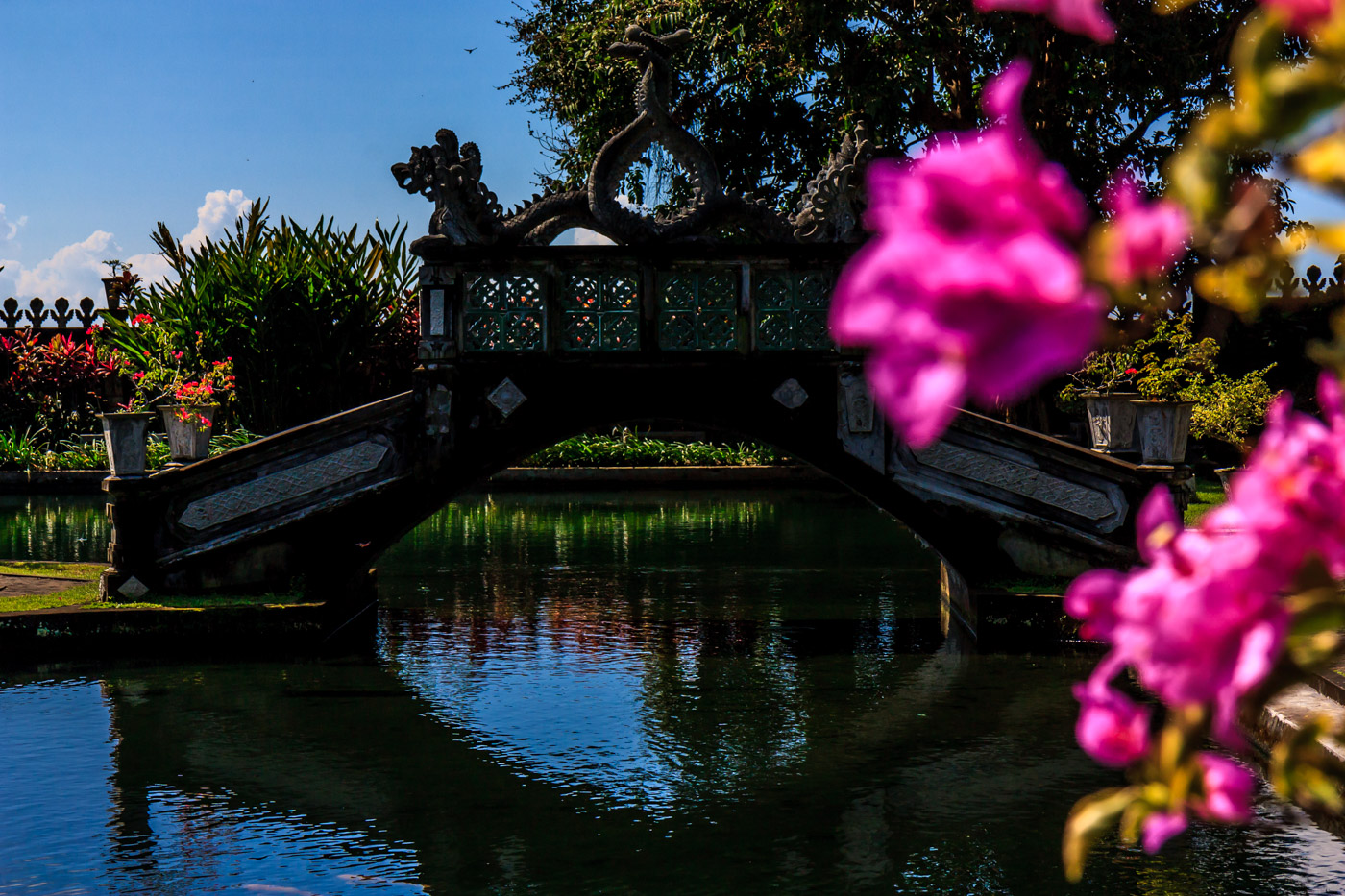 Flowers and bridge.