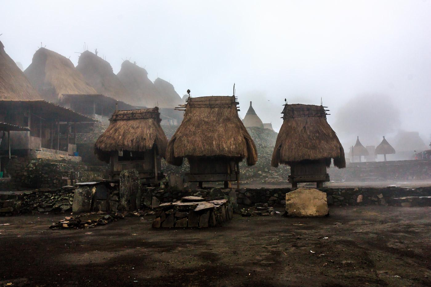 Bhaga in the mist.