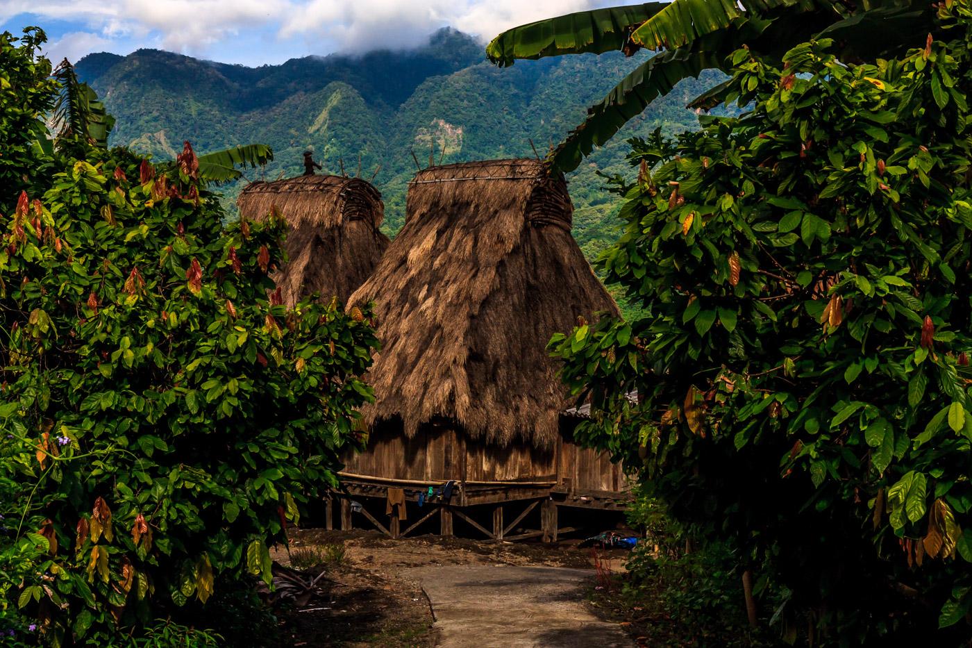 Gurusina village comes into view.