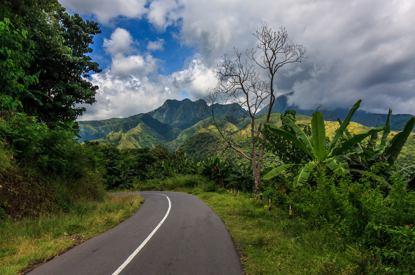On the Trans-Flores Highway.