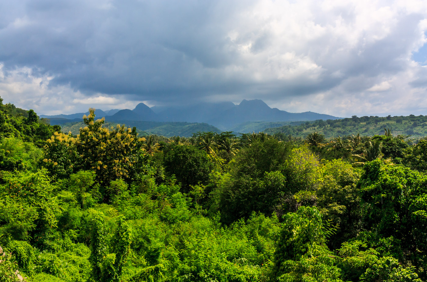 Mountains over the jungle.