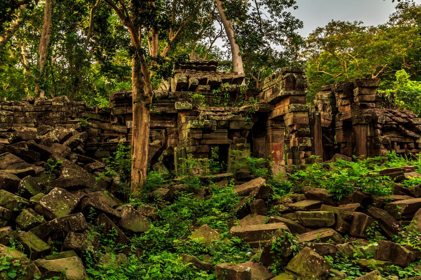 Overgrown ruins.