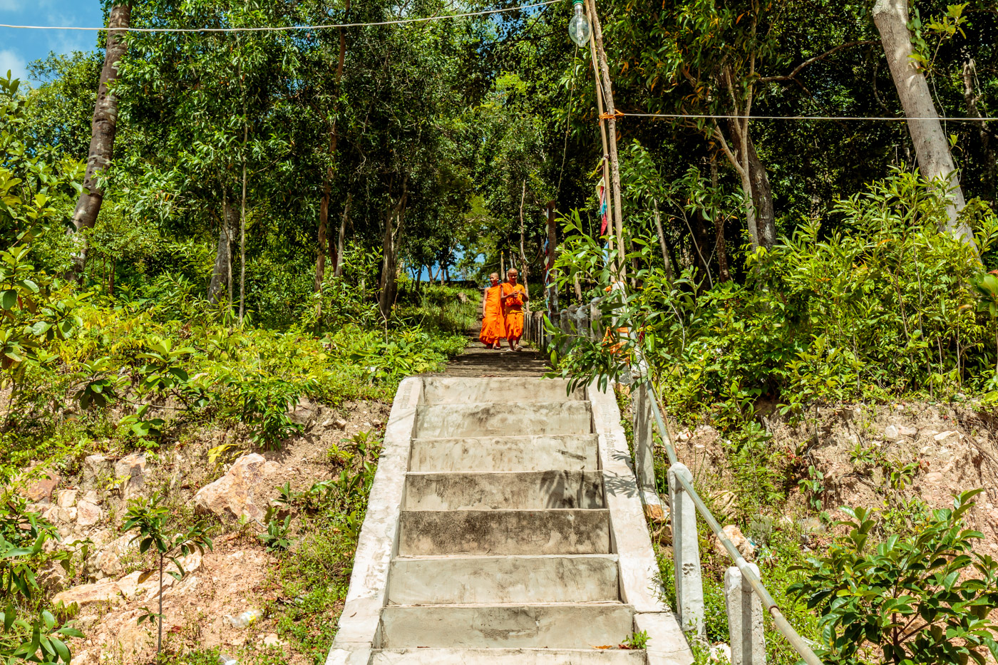 Novice monks coming down the stairs.
