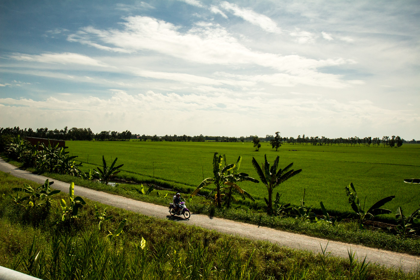 In the green countryside.