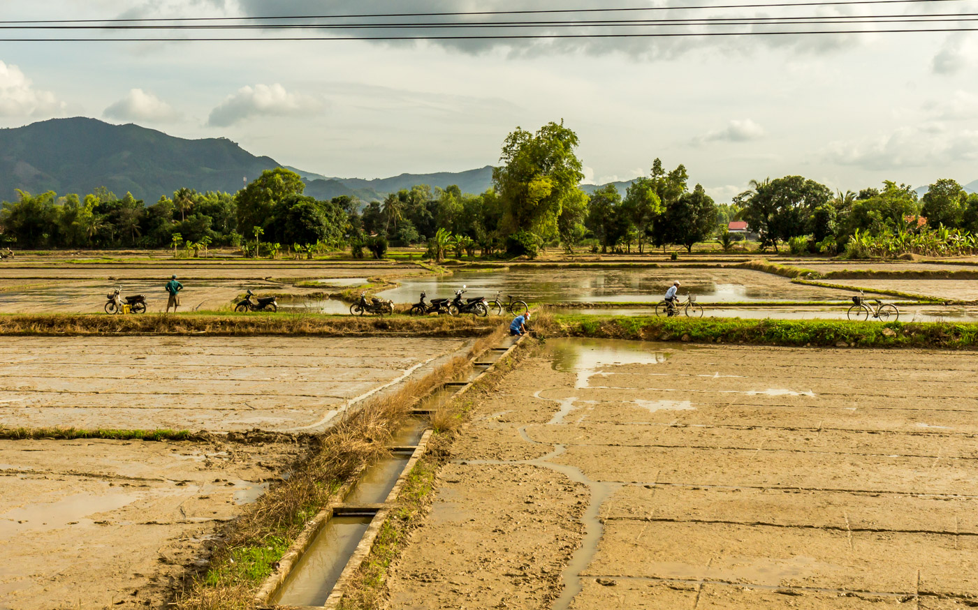 The final approach to Nha Trang was on flat land, given over to fields.