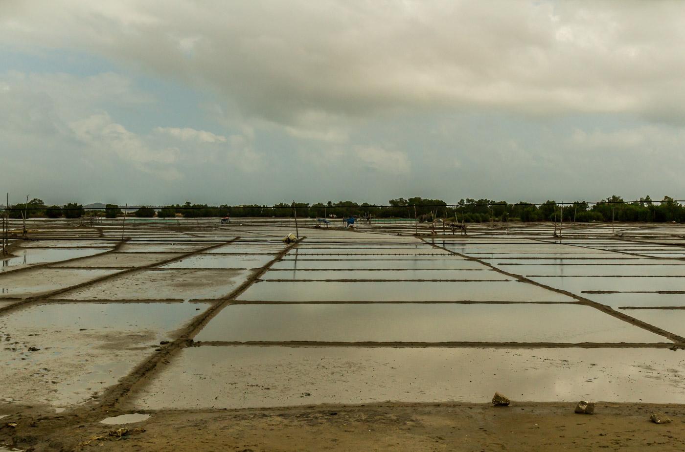 Maybe these were salt fields?