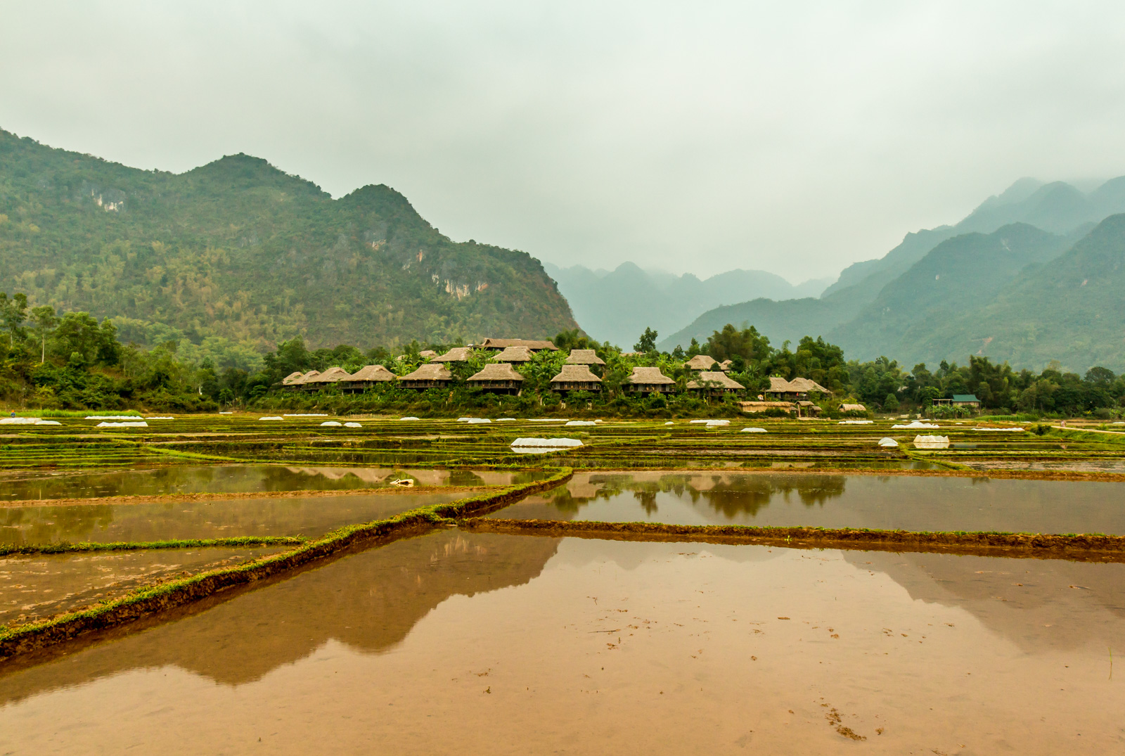 Deep in the rice fields was a mysterious traditional village... Actually, it's just a resort.