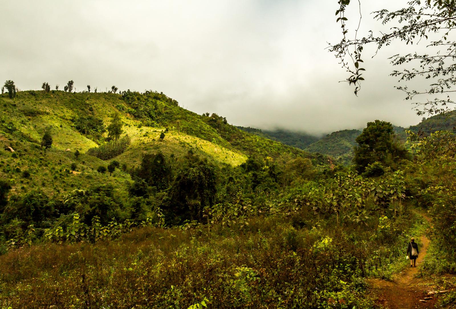 The trail passed through idyllic landscape.