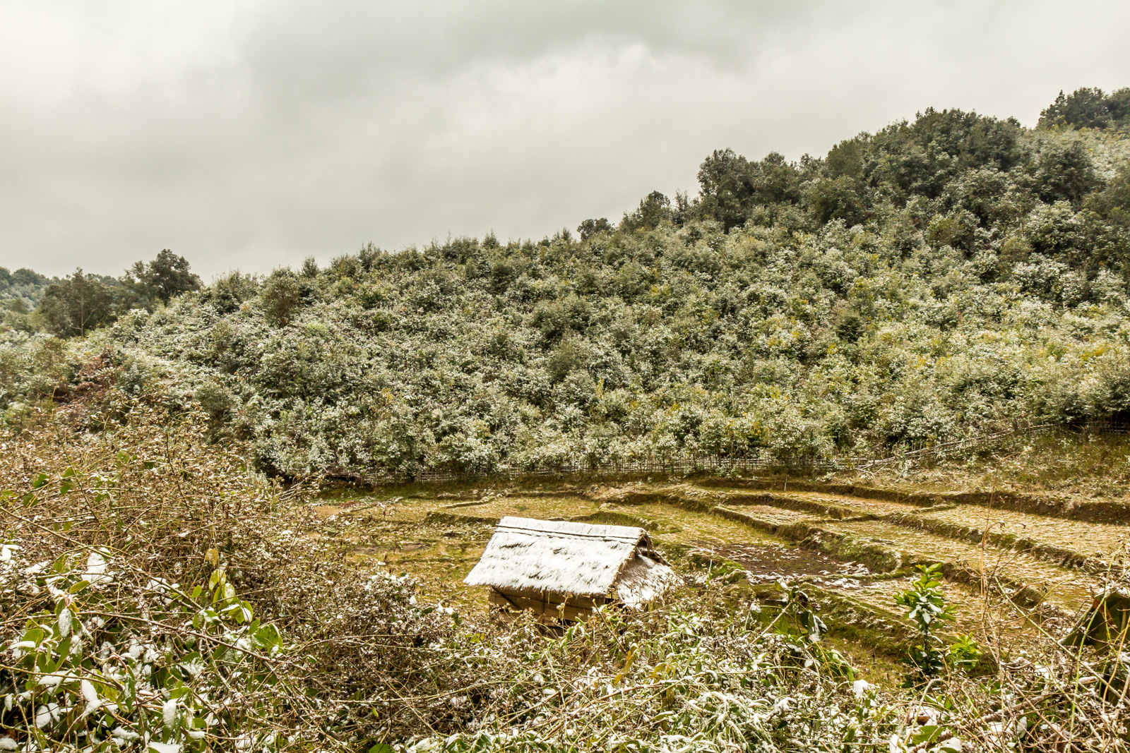 Snowy Laos.