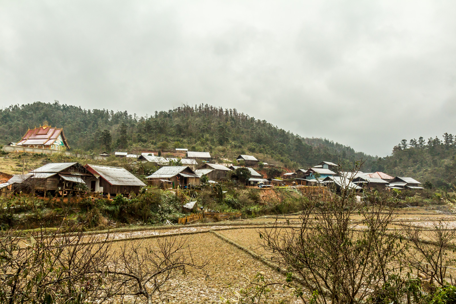 Village in the winter.