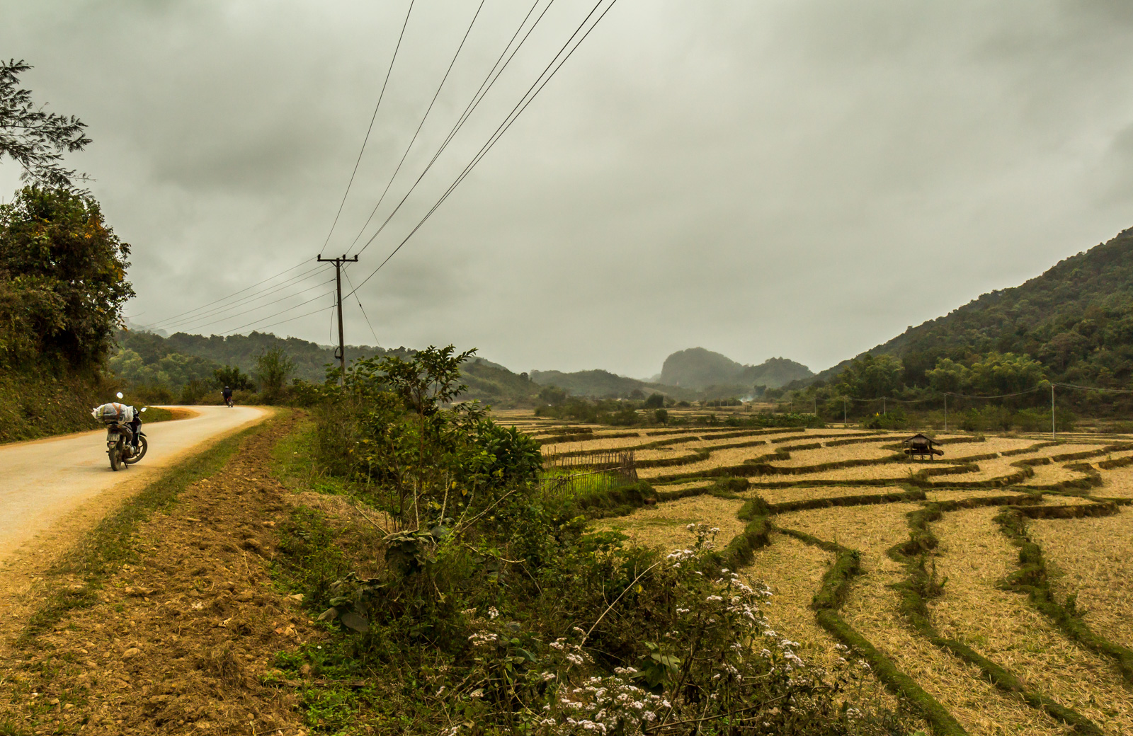 Despite being so close to Vietnam, the landscape was different.