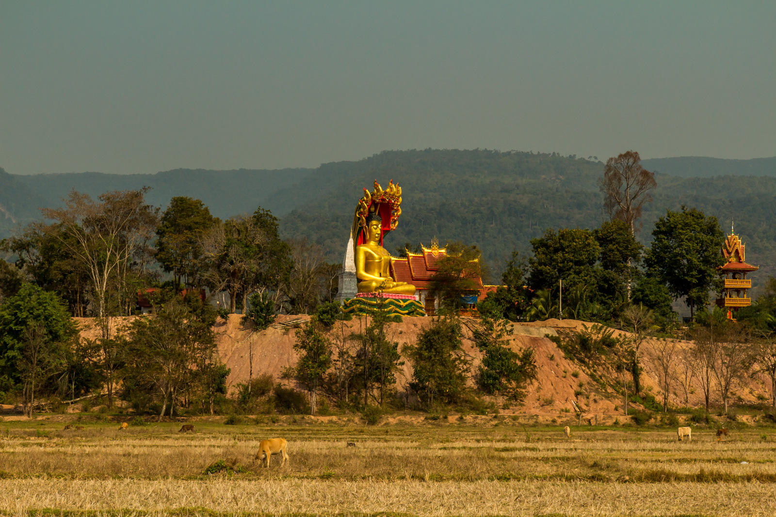 Unlike Cambodia, I had not seen a lot of temples in Laos. There were a few on this ride.